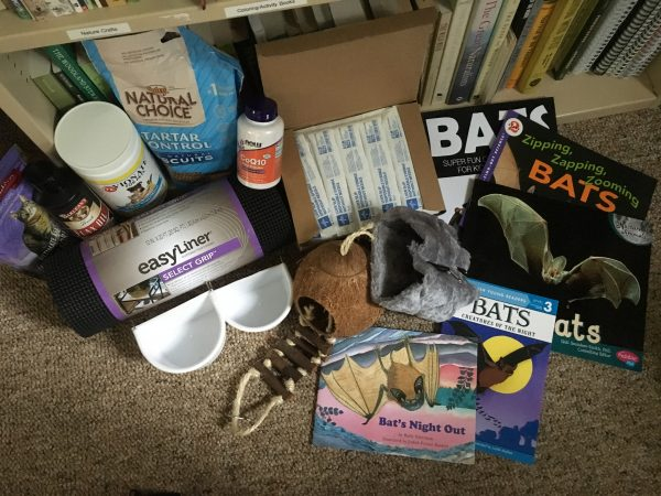 Photo of bat monitoring supplies.